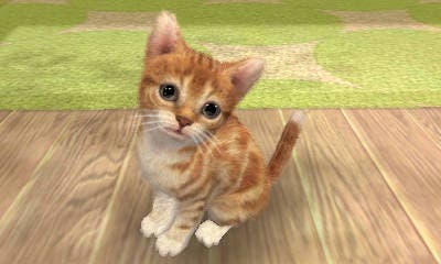 nintendogs_cats_nintendo_3ds_11