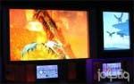 [E3 2013] Los creadores de 'Crimson Dragon' trabajan en un proyecto para Nintendo
