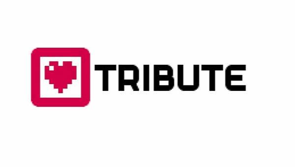 A la desarrolladora Tribute Games le gustaría volver a trabajar en las consolas de Nintendo