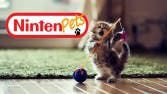 gatito-jugueton-1920x1080-wallpaper-wide-fondo-animales-felinos-minino-little-kitten