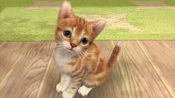 'Nintendogs + Cats' desaparece de la eShop norteamericana de 3DS