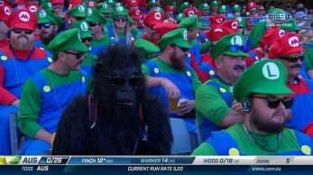 Fans del cricket se visten como Mario y Luigi durante un torneo