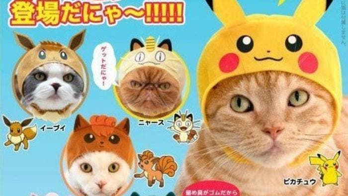 Anunciada una línea oficial de gorros Pokémon para gatos en Japón