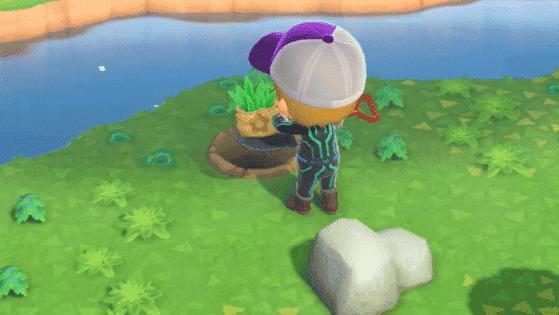 Facebook parece estar eliminando publicaciones de Animal Crossing que mencionan «hierbas»