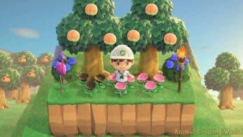 Un nuevo glitch permite elevar hasta 4 niveles el terreno en Animal Crossing: New Horizons