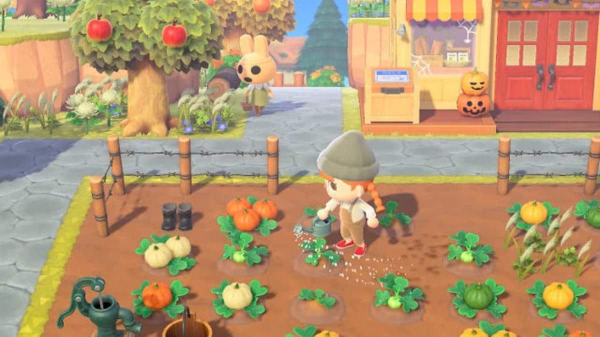 Aprende a cultivar las mejores calabazas para Halloween con este vídeo de Animal Crossing: New Horizons