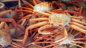 Cangrejos reales: este es el premio del próximo torneo oficial de Fight Crab